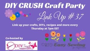 Craft Party #37